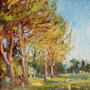 Oil on canvas painting of the evening sun illuminating the trees of Paso Robles by Daniel Bayless