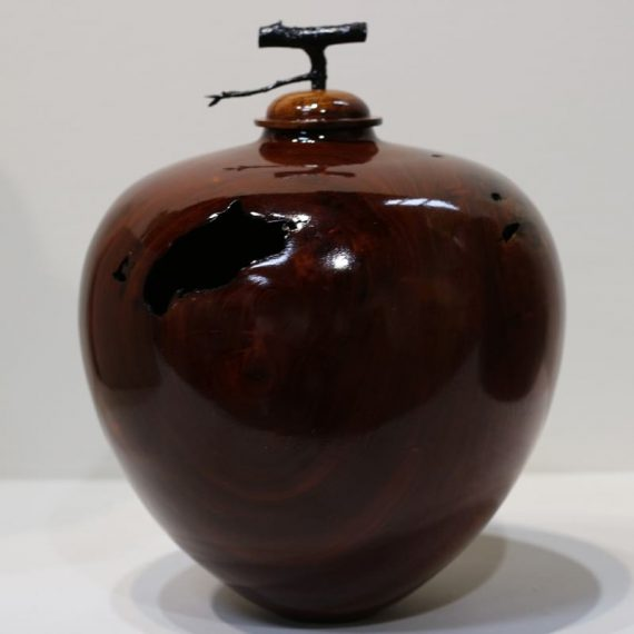 Hollow Vessel with apple tree twig lid