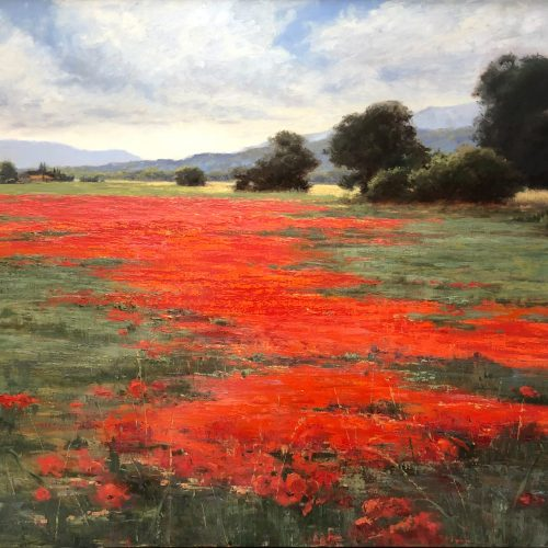 Oil on linen Les Coquelicots! Poppies! by Mary Erickson